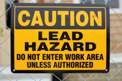 Lead Hazard Warning